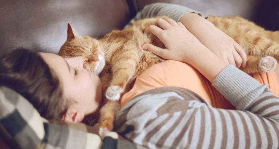 kediler kaç saat uyur